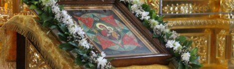 В день чествования иконы Божией Матери «Неопалимая Купина» в соборе Рождества Христова совершено молебное пение.